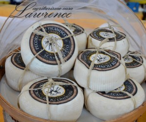 Pecorino_picinisco-casa_Lawrence